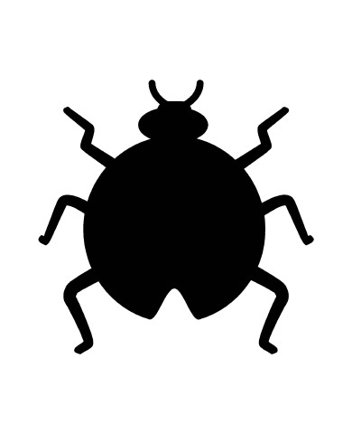 Bug 2 image