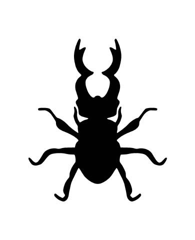 Bug 4 image