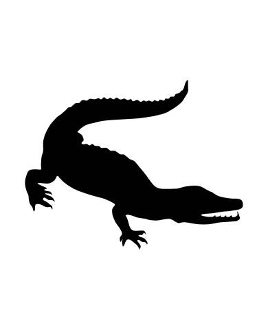 Crocodile image