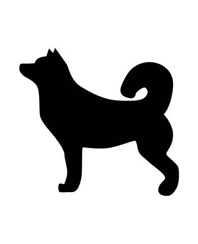 Dog 5 image