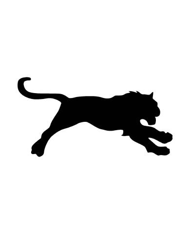 Lion 2 image