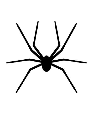 Spider 3 image