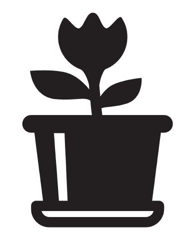Plant 1 image