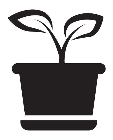 Plant 2 image