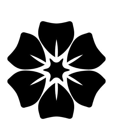 Flower 31 image