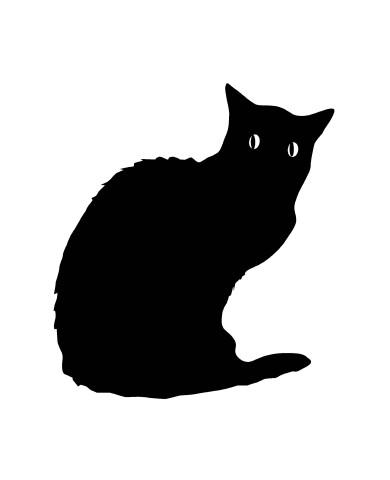 Cat 2 image