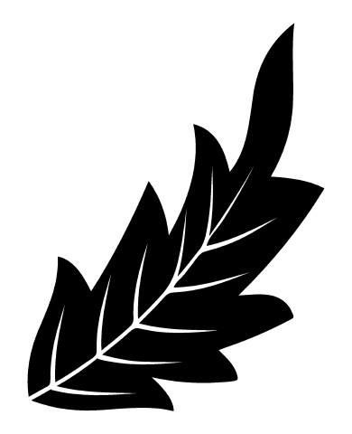 Leaf 18 image