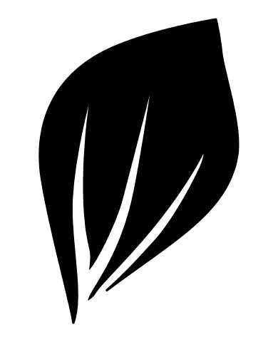 Leaf 2 image