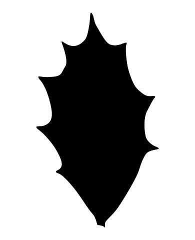 Leaf 28 image