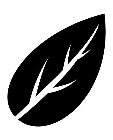 Leaf 4 image