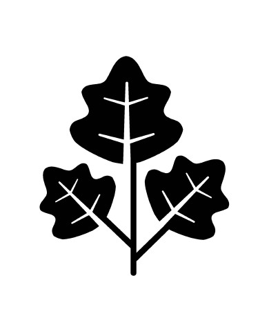 Leaf 1 image