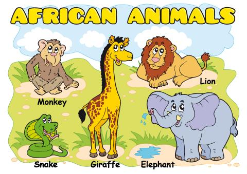 African animals poster template