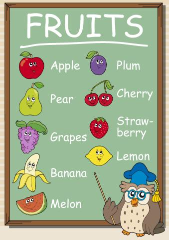 Fruits poster template