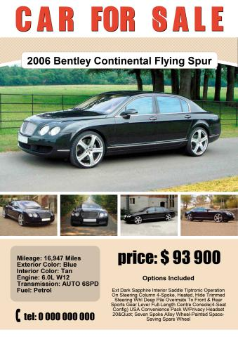 Superb Car For Sale 1 Poster Template  For Sale Poster Template